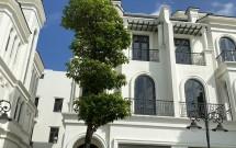 Biệt thự Song Lập Sao Biển 15 Đông Nam Dự án Vinhomes Ocean Park Gia Lâm Giá 19 tỷ LH 0974279521