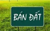 Chính chủ bán mảnh đất tại xã Xuân Canh, Đông Anh, DT131m2 Giá 42tr/m2 LH 0936413876