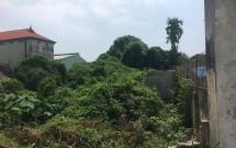 Cho thuê đất 720m2 tại thôn Đông Trạch, xã Ngũ Hiệp, Thanh Trì